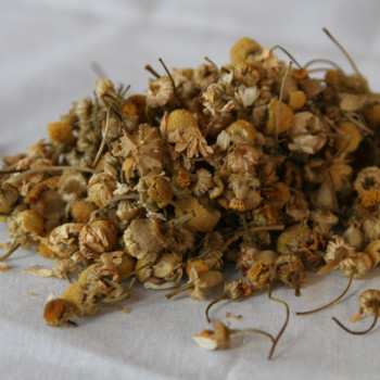 Whole Camomile Flower Loose Leaf Tea