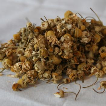 Whole Camomile Flower Loose Leaf Tea