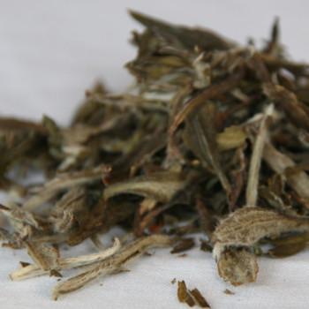 Snowbud Tea